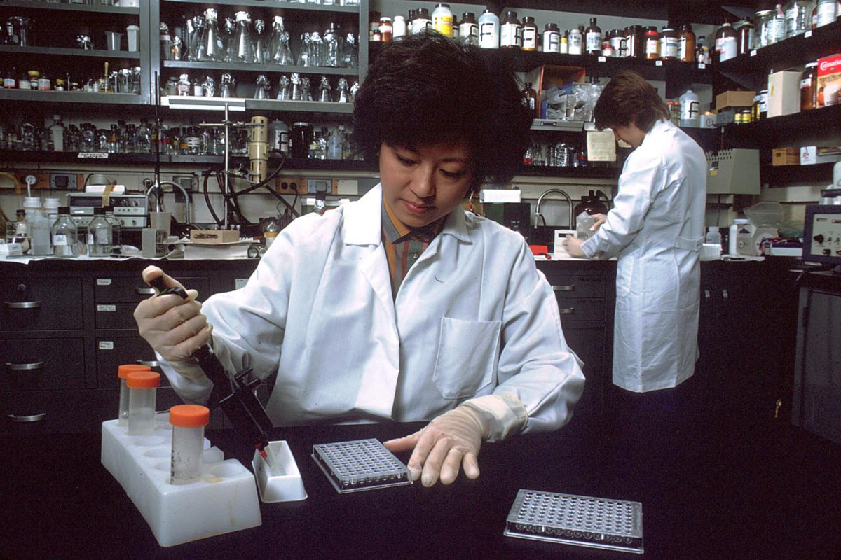 Laboratory technician using the enzyme-linked immunosorbent assay (ELISA) test to screen for HIV-1 antibodies.