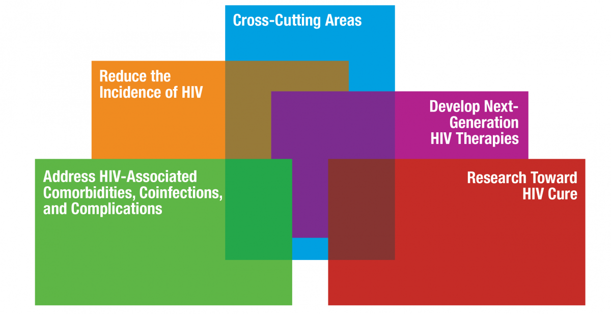 NIH HIV Research Priorities